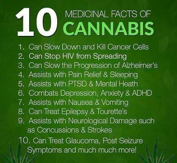 Cannabis-Facts